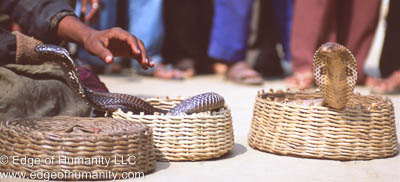 Indian Snake Charmer | Edge of Humanity Magazine