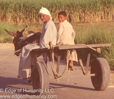 Man and a boy moving around on a horse cart - Egypt.