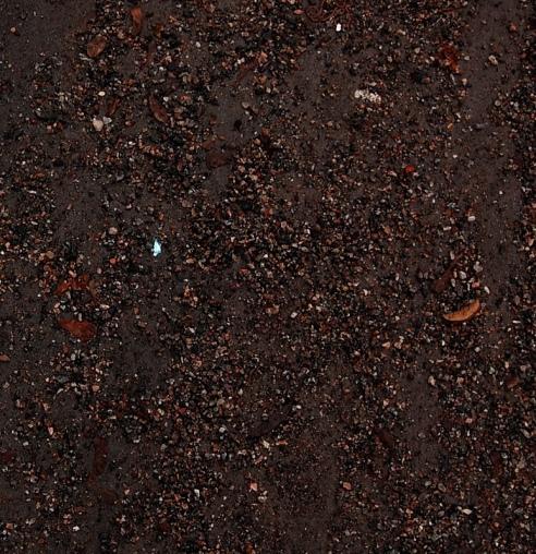 Natural Patterns - Ground