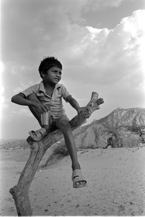 Boy is sitting on the dead tree in the desert Rural Rajasthan, India