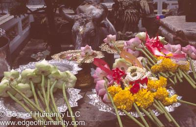 Buddhism offerings Bangkok, Thailand