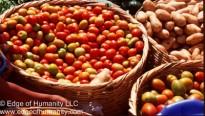 Food stand, tomatoes and potatoes - Guatemala.