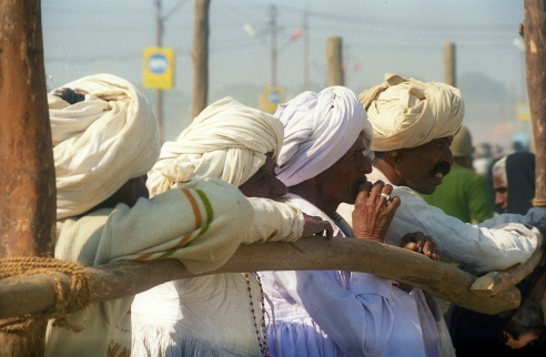 This group of Gujarati guys was waiting for holymen to come back after their bath at Sangam. They had strong faith, like millions of other pilgrims, that a sight of Mahatmas will bring them luck.