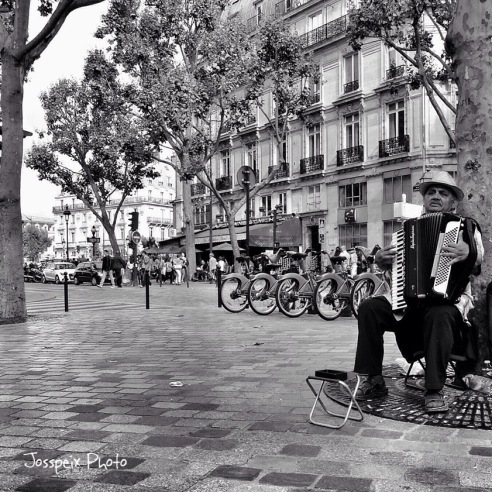 The accordionist - Place Saint André des Arts
