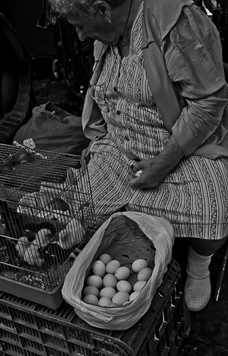 """Elderly woman selling Sicilian white eggs"" Catania, Italy"