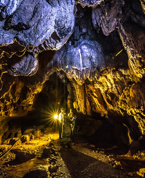 Wailotua Caves: During special ceremonies, villagers harvest the microbats for consumption. Using smoke, the bats are first herded into a small cave chamber. Waiting inside is a villager who uses no more than her/his teeth to crush their skulls. Finally, their bodies are collected into a bag. Reportedly, no amount of water, tea or juice can remove the taste of dead bats from the mouth; only yaqona (A traditional drug brewed from the yaqona root. Also known as 'Kava').