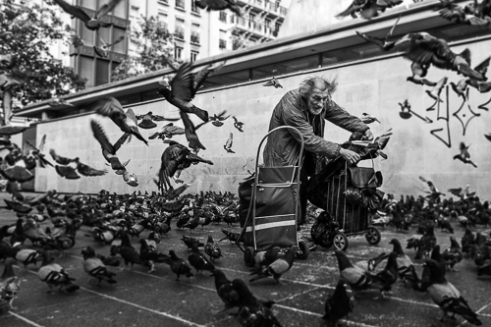 Gisueppe in the middle of his family. He sleeps on the streets of Paris. The love from his birds is his hole life.
