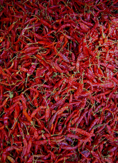 eating chili peppers essay Blog festival: chillies burn our tongues, make our eyes water and bring us   about a third of the people around the world eat hot peppers every.