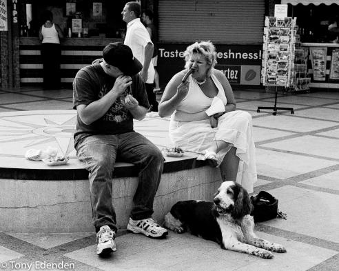 Feeding Time Poole, England