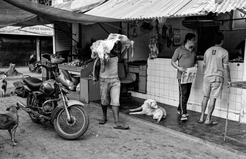 Meat Market Goa, India