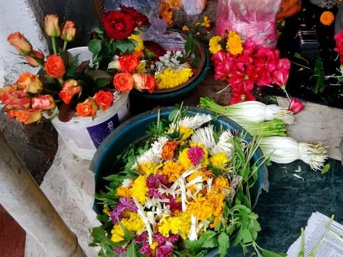 Flowers used in pookalam