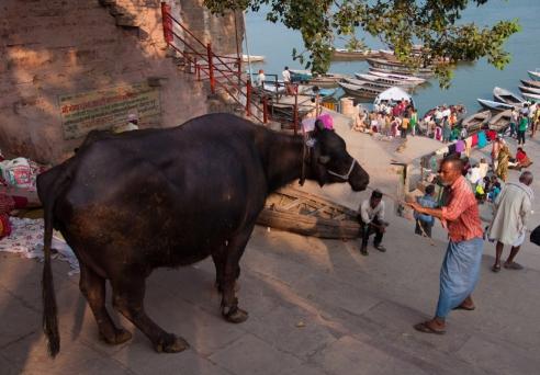 We are same Varanasi, India