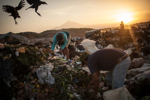 Women and men are collecting trash under the first rays of sunlight illuminating Tapachula's municipal rubbish dump as two vultures fly over them.