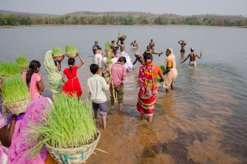 During this religious ceremony, the wheat plant is worshipped in the form of a Devi (or goddess). Women carry baskets of freshly grown wheat on their heads while the men sing and dance with musical instruments as they walk down to a water body where the plant is, washed and distributed as an offering to every family. This celebration is carried out to pay tribute to the plants that sustain human life. Baiga Tribe Village outside Kanha National Forest in Madhya Pradesh, India.