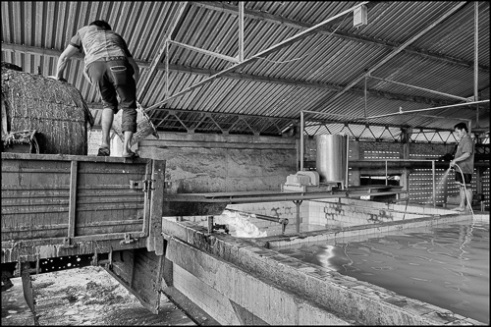 Chup Rubber Factory, Kompong Cham Province, Cambodia