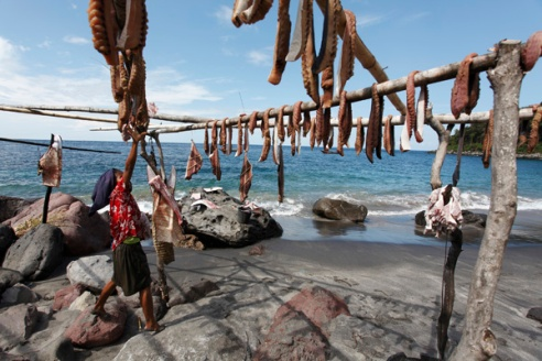 Manta ray meat dries on racks on the beach. Three pieces of manta meat, roughly 6 inches in length, can be exchanged for a kilo of rice with the highland people.