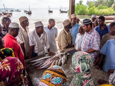 A fresh catch, attracts much interest during the bartering process, tradition fishing boats in the distance.