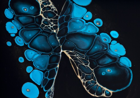 Evolution Poured fluid acrylics and ink. This artwork illustrates the fascinating pigment patterns that form through a layer of black ink.