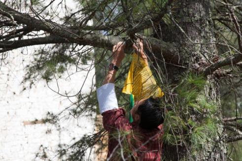 Our guide Hanging prayer flags behind Paro Dzong, or Monastery, on the outskirts of Uma Pharo.