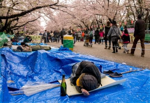 A person sleeps soundly while saving their spot for festivities later in the day. Ueno Park, Tokyo