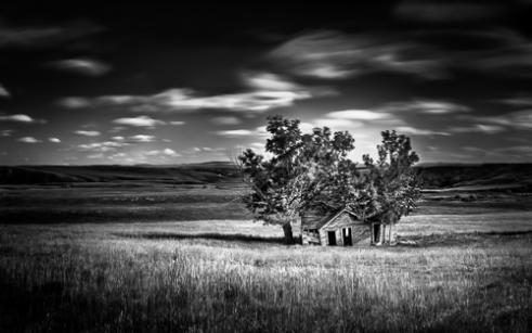 Assimilation Wheatland County, Alberta, Canada