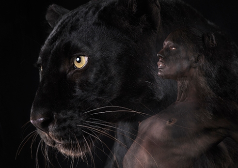 Black leopard composited with human female body painted with the leopards coloration.