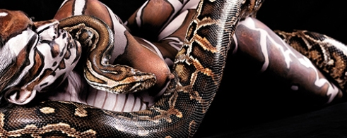 Burmese Python entwined with female human body painted with the python's markings.