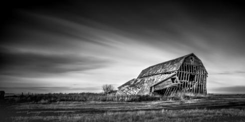 Skeletons Wheatland County, Alberta, Canada