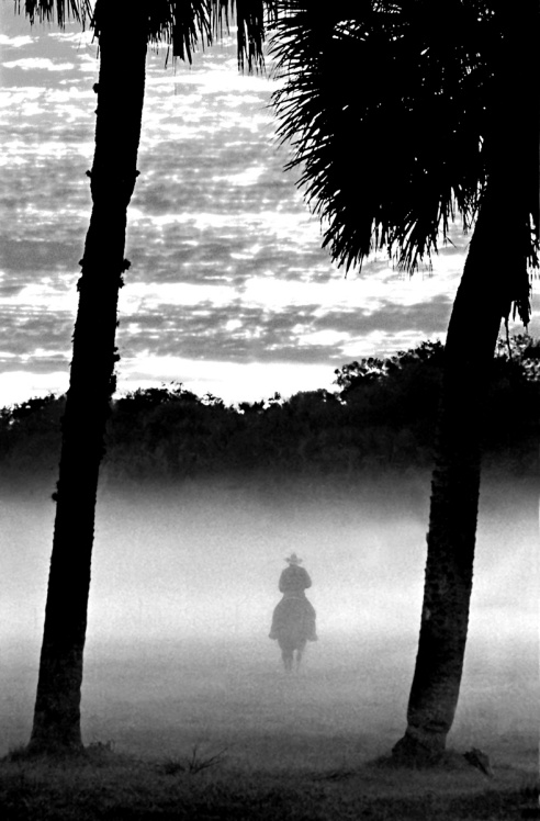 Morning Commute A Florida cowboy on his way to work at sunrise, to round up some bulls.