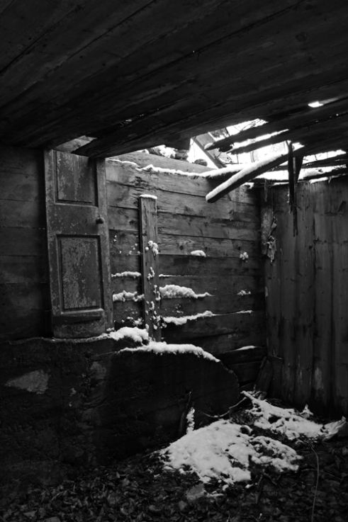 'Snow indoors'. The interior of a ruined croft is slowly reclaimed by nature, near Lochearnhead, Stirlingshire, Scotland.