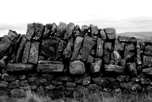 'The hand of man'. A drystone dyke (wall), on a sheep farm in the Pentland Hills, Scotland. Sheep farms are commonplace now throughout Scotland, with some 75% of the land area under agriculture.