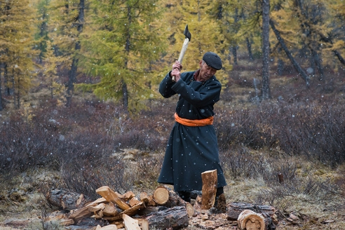 THE LIFE IN ORTZ Ganbat Sandag (57), an elder of the Tsaatan community in East Taiga, Mongolia, prepares firewood for the night on September 19, 2015.