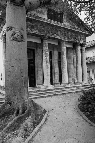 El Templete with Ceiba Tree Plaza de Arnas, Havana