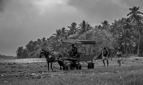 Fisher People Toa River Delta, Baracoa
