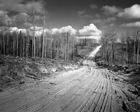 Logging Road Block 3368A Ghost Valley October 2015