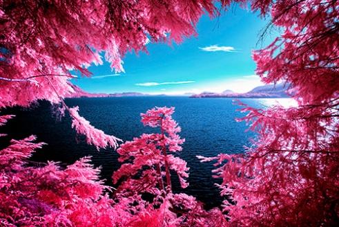 Kennedy Lake British Columbia, Canada
