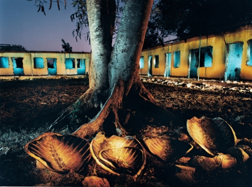 Abandoned seaside hotel with Sea turle shells Mtwara, Tanzania, 1994