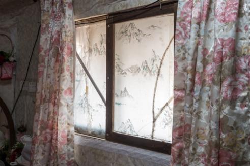 Window, 2014
