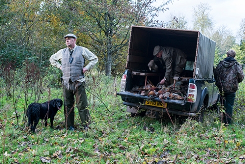 Workers Collecting the Pheasant