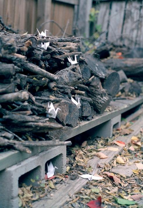 Wood, 2011