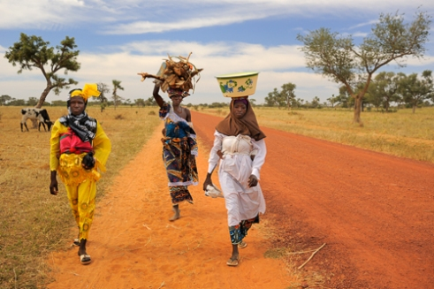Women going to the daily market. Road to Djenne