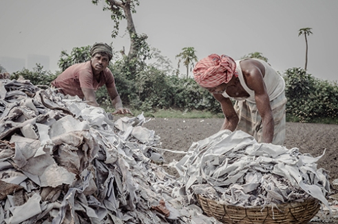 The workers here seen piling the used and waste leather from tanneries to dump them into the furnace .The toxic fumes from these burnt materials make breathing uneasy and often causes nausea and headache. Kolkata,India.