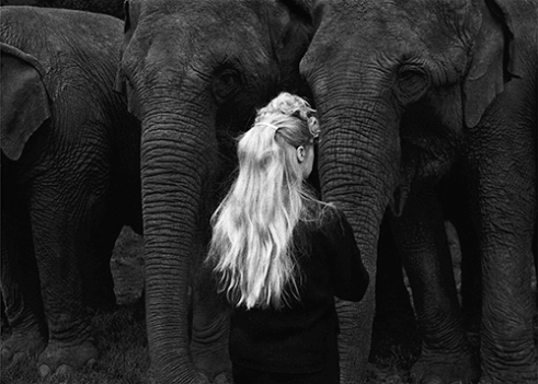 Elephant Girl Philadelphia 1965
