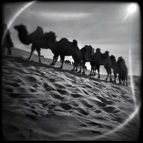 INNER MONGOLIA - 2010/2011