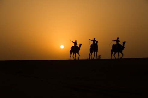 Sunrise in the Thar desert, India. Three camels and their riders gallop along a desert ridge