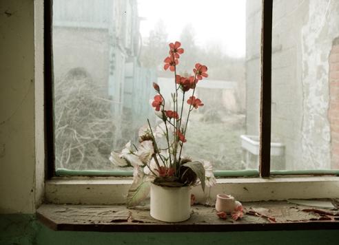 A windowsill in a house Belgium