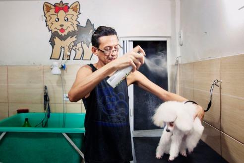 Luciano, dog groomer Cidade de Deus