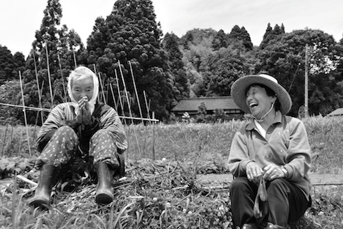 'Sorry to bother you' I said interrupting these ladies during their field work, calmly one of them responded: 'Never mind, we do not have any plans to do this afternoon, tomorrow and more.'