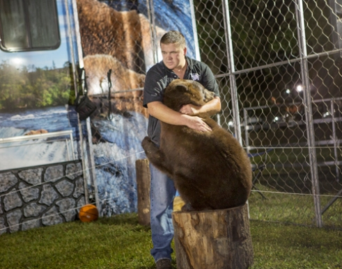 "A proprietor of a traveling show titled, ""A Grizzly Experience"", is depicted between performances holding the hand of his son through the fence where he sits with his trained Alaskan Grizzly bears at the Volusia County Fair in Deland Florida. The image addresses the dichotomous human-animal bond and the ill-defined slippery notion of borders and boundaries referring to how they are either honored or crossed. 2015."