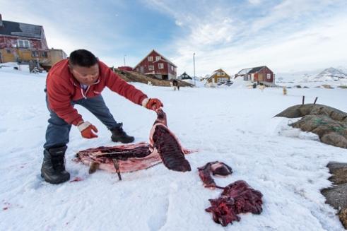 Reportage côte Est du Groenland.